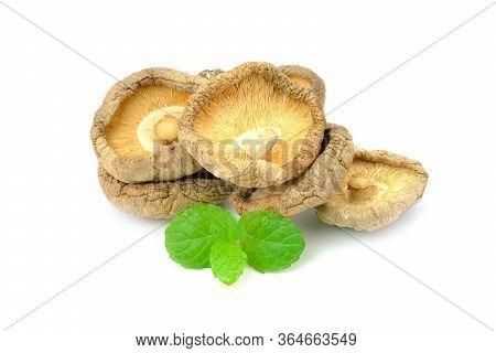 Dried Shiitake Mushrooms On White Background, Is An Edible Mushroom Native To East Asia, Mushroom Is