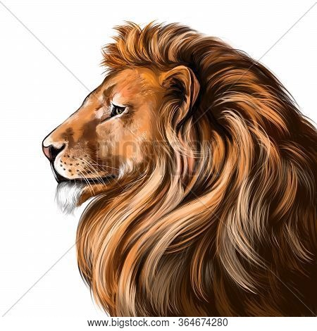 Animal Lion, King Of Beasts, Art Illustration Painted With Watercolors Isolated On White Background