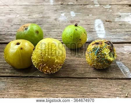 Close-up Of Growth Of Mold On A Rotten Fruits - Concept Of Bad Food.