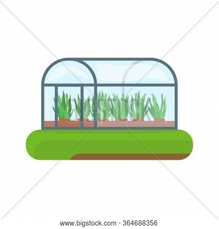 Greenhouse On Abstract Green Land Island. Green Plant In Terracotta Flower Pot. Vector Plant In Clas