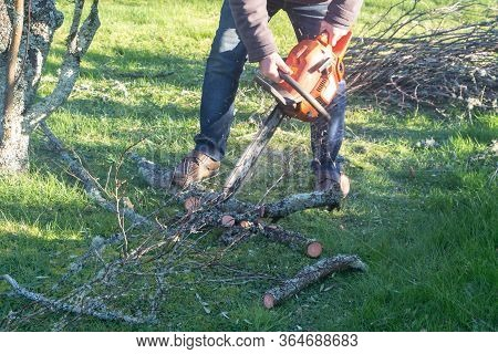 Lumberjack Cutting Branch On The Ground With A Chain Saw