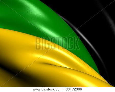 African National Congress Flag
