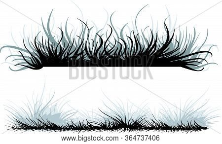 Set Of Two Stylized Herbs In Black Color, Isolated Object On A White Background, Vector Illustration