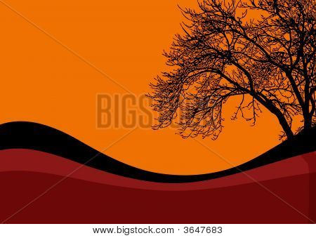 Halloween Black Tree Background