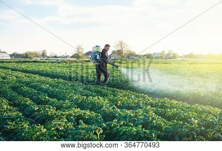 A Farmer Sprays A Solution Of Copper Sulfate On Plants Of Potato Bushes. Use Chemicals In Agricultur