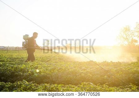 A Farmer Sprays A Solution Of Copper Sulfate On Plants Of Potato Bushes. Agriculture And Agribusines