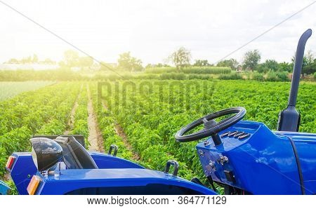 Blue Tractor In A Paprika Pepper Plantation Field. Farming And Agricultural Industry. Cultivation An