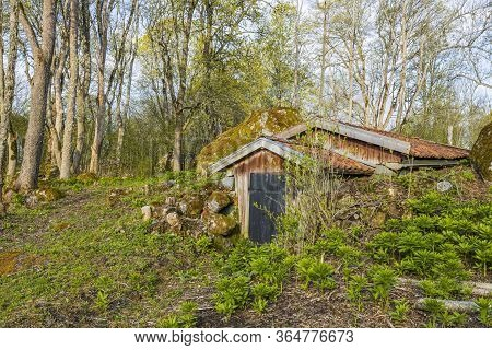 Close Up View Of Vintage Underground Cellar On Spring Forest Background. Beautiful Vintage Backgroun