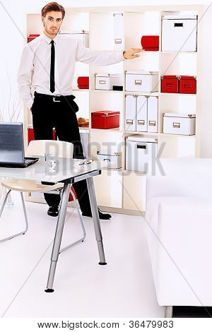 Handsome businessman is working at the modern office.