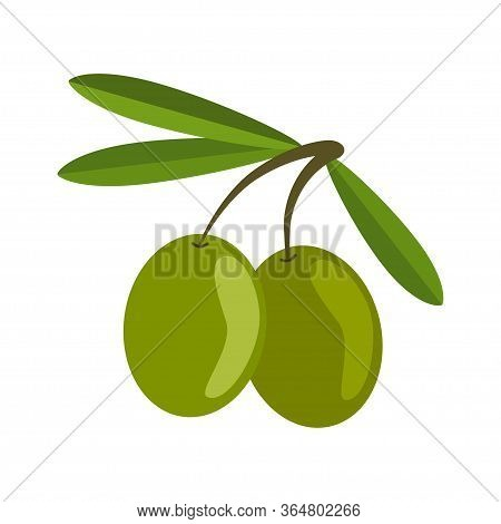 Green Olives On White Background. Branch Olives Whith Leaves. Illustration In Flat Style.