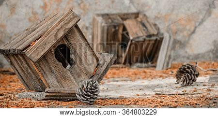 Abandoned Bird Houses (nest). Residents Leaving Their Homes. Сrisis On The Real Estate Market, Or Le