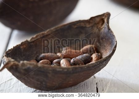 Cocoa Pod On White Wooden Table