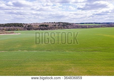 Picturesque Rural Landscape In Sunny Spring Day. Green Agricultural Fields Under Cloudy Blue Sky. Ae