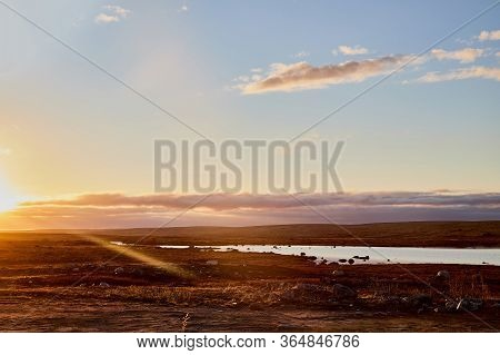 Beautiful Landscape With Lake, Yellow Sunset Or Sunrise Over Water And Tundra In Summer, Spring Or A