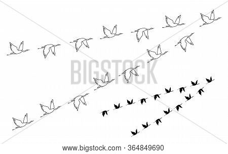Crane. Flock Of Birds Flying. Vector Outline And Black Image Silhouette.