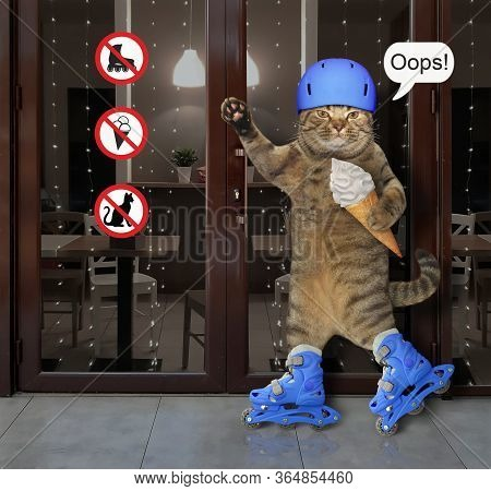 The Cat In A Blue Protective Helmet With A Ice Cream Cone Is Skating On Rollerblades Past A Cafeteri