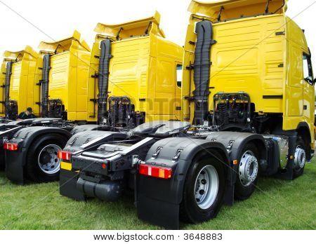 Rear of lorries
