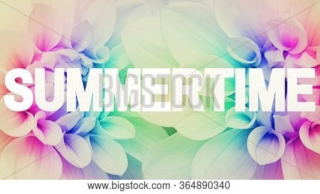 Summertime Text Summer Word Season Summer Time Flower