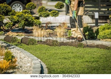 Male Landscaping Worker Raking Soil And Laying Rolls Of Sod.