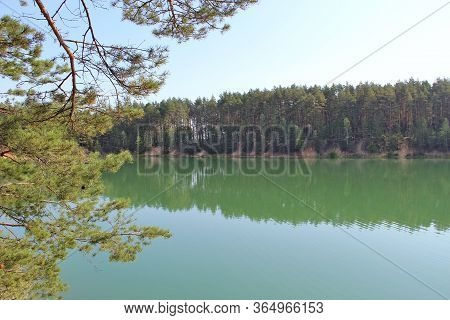 Beautiful Forest Lake With Greenish Water In The Pine Forest. Wonderful Natural View. Water Panorama