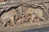 Relief carving of elephants around the base of the ancient Surya Hindu Temple at Konark Orissa India. 13th Century AD poster