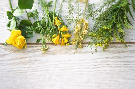 Colorful Flowers In Yellow And Green On A Wooden Background In The Springtime