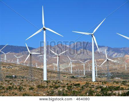 Electric Wind Turbine Field