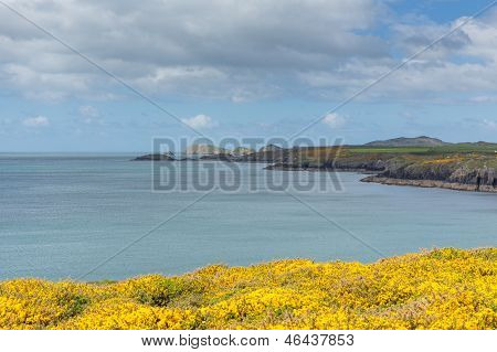 St Brides Bay near St Non`s Wales photographed from Wales Coast Path Pembrokeshire UK poster