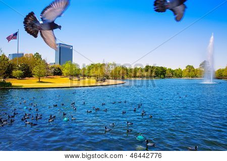 Houston Mc govern lake with doves spring water and green grass in Texas