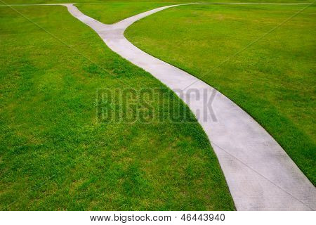 Garden lawn grass with a two option ways detour metaphor of which way to choose