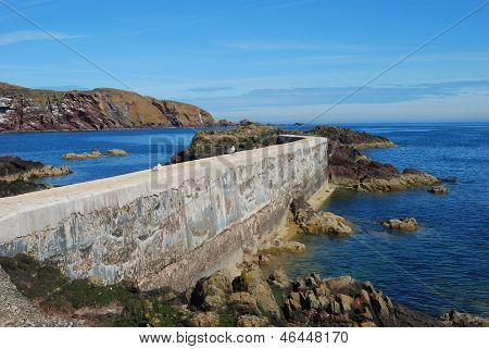 Pier, Seagulls, Cliffs And Coast At St. Abbs, Berwickshire
