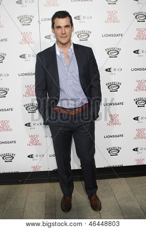 LOS ANGELES - JUN 5: Sean Maher at the screening of Lionsgate and Roadside Attractions' 'Much Ado About Nothing' on June 5, 2013 in Los Angeles, California