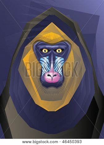 Mandril Monkey Illustration