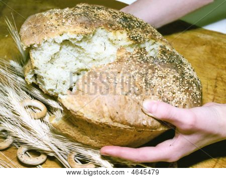 Breaking a potato bread with sesame seeds poster