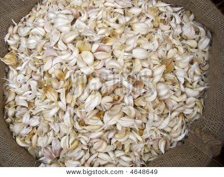 Bulk Garlic In A Sack
