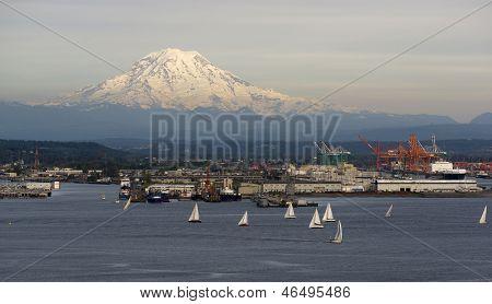Sailboat Regatta Commencement Bay Puget Sound Mt Rainier Tacoma Washington