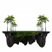 file of palm tree and green grass field on floating island use for multipurpose background poster