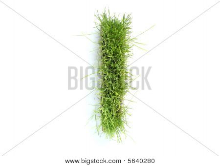 Letters Made Of Grass - I