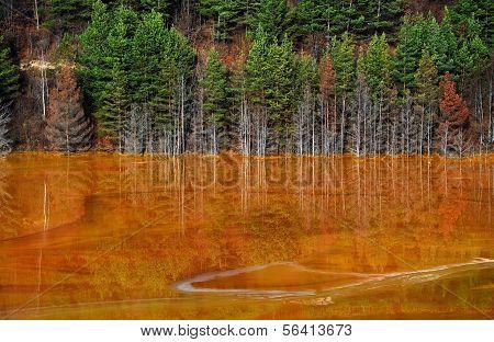 Lake Water Contamination In Geamana, Near Rosia Montana, Romania