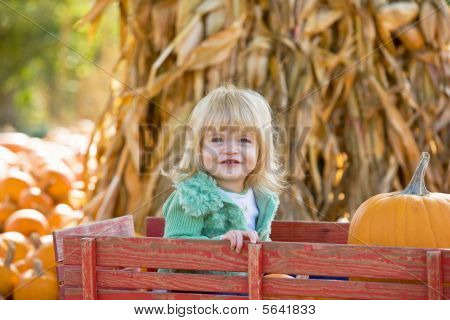 Little Girl in a Wagon