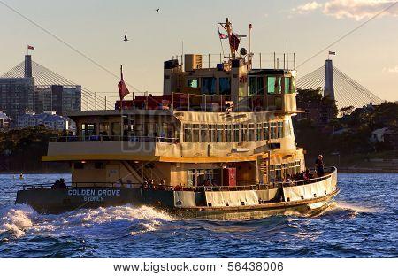 Sydney Ferry and ANZAC Bridge