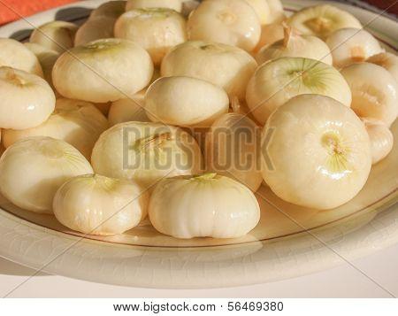Onion (Allium cepa) also known as garden or bulb onion poster