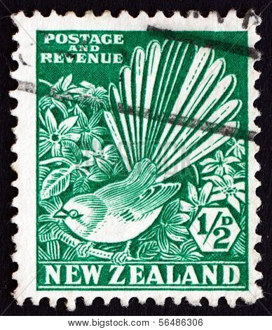 Postage Stamp New Zealand 1935 Pied Fantail And Clematis