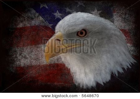 The national bird of the United States Of America the majestic bald eagle against a Flag background. This is a photoshop painted photograph. Great patriotic image. poster