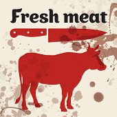 Fresh meat, beef, vector illustration with cow silhouette poster