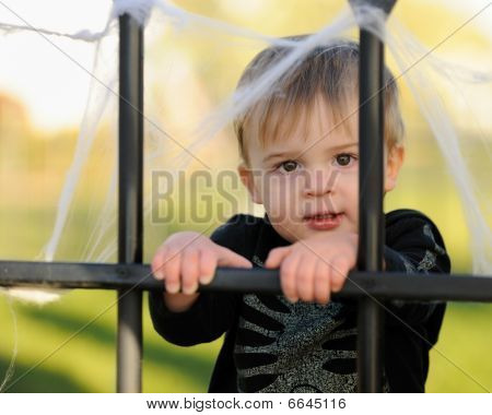 Young boy looking through iron cemetery fence