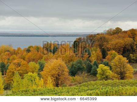 Autumn Michigan landscape