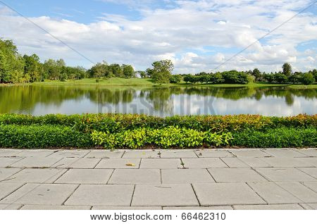 Shrub Fence With Lagoon On Blue Sky Background