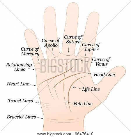 Palmistry Right Hand White