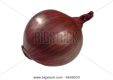 Red Onion - with clipping path
